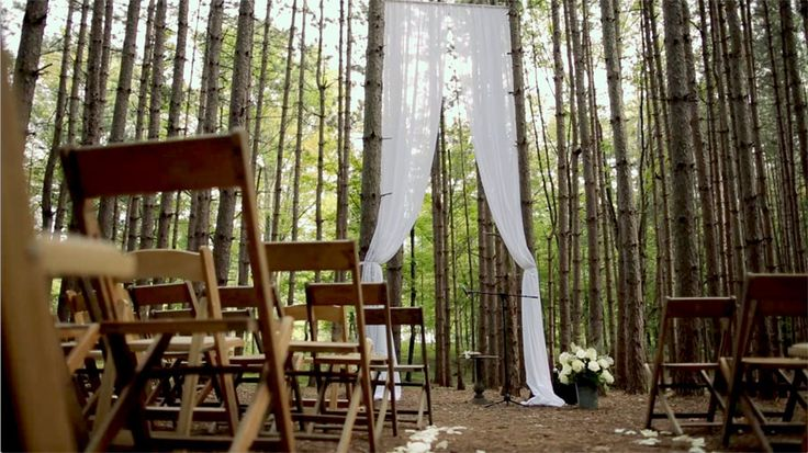 202 Best Rustic Apple Orchard Wedding Images On Pinterest