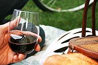 Govino :: some pretty cool reusable, unbreakable wine glasses... makes me want to have a picnic (4 pack $13)