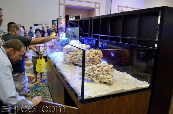 The reef savvy 8 39 x3 39 300 gallon rimless for Rimless fish tank