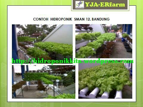 12 Senior High School Bandung by #YJA-ERfarm