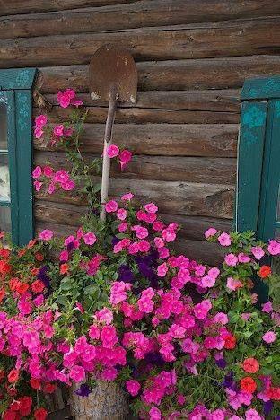 Cabin Flowers & Spade