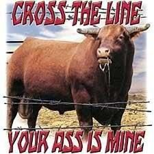 Bulls...True !!
