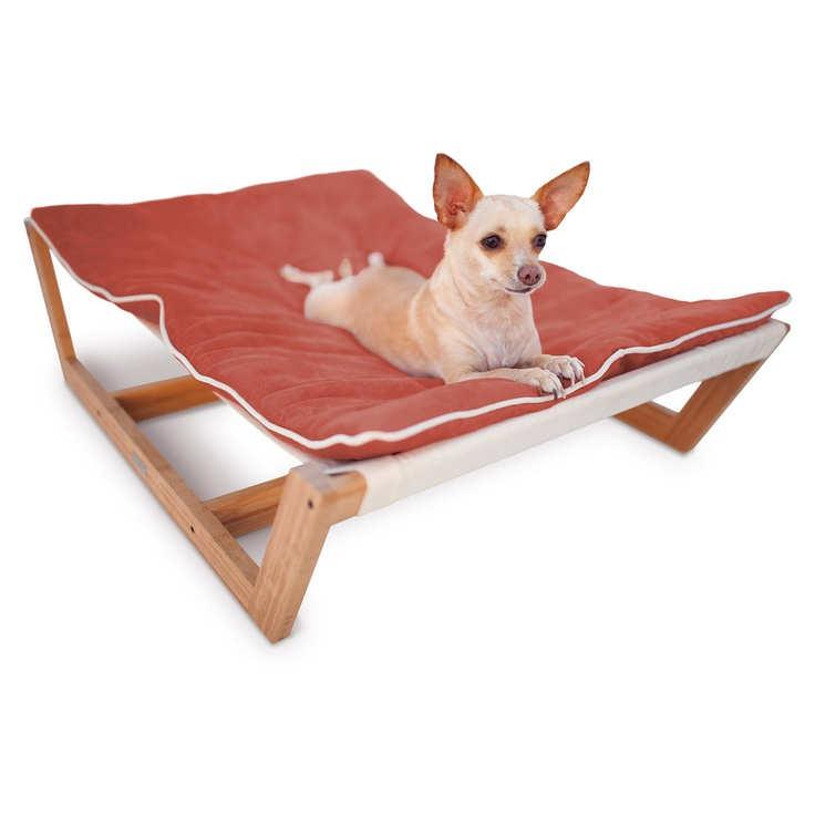Best Dog Bed For Rat Terrier