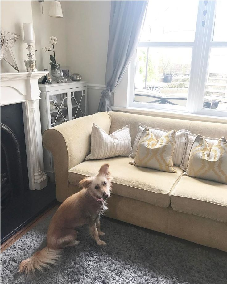 We Love To See Multiyork Sofas In Our Customers Own Homes So Thank You
