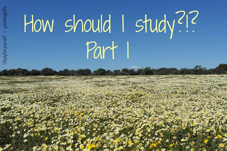 "Hi Guys! This is part 1 of my ""How should I study?!?"" posts. A post like this was requested.    Stuff you need textbooks exercis..."