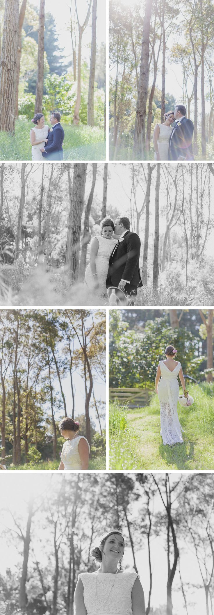 Beautifully light coming through the trees, a Sudbury wedding on the kapiti coast near Wellington, NZ.