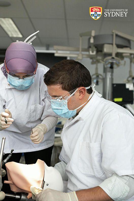 Dentistry sydney art university