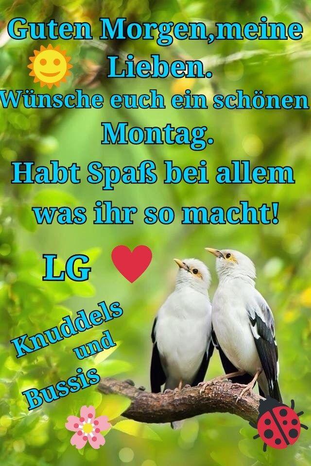 whatsapp status sprüche montag   Guten morgen lustig ...