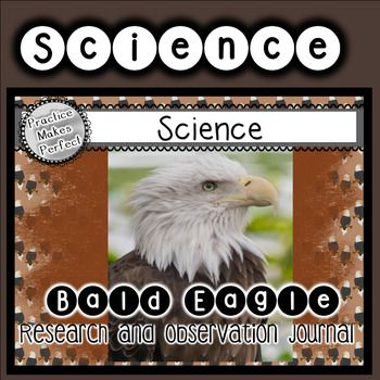 Learn more about Bald Eagles by researching the answers to seven questions, writing the answers, and drawing a matching illustration. to observe the life and life cycle of a bald eagle. Maybe you'll see an egg hatch!! Using the Pittsburgh Eagle Cam