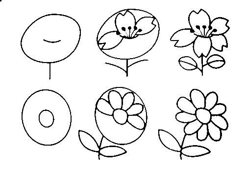 Step by step drawing flowers art pinterest drawing for Easy flowers to draw for beginners step by step