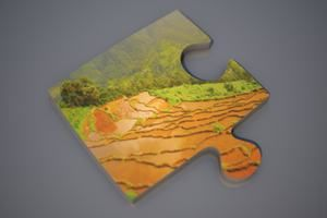 Global Food Security: Addressing the Challenge How will we feed an extra two billion people by the middle of this century?