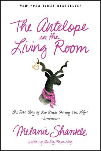 The Antelope in the Living Room: The Real Story of Two People Sharing One Life  Melanie is both a hoot and a pro at chatting about the realities of marriage.  Not so much a 'here's how to do marriage better' book, but more a 'here we all are in this hilarious, glorifying mess that is ridiculous yet glorious.'  LOVE her straightforward chatting.