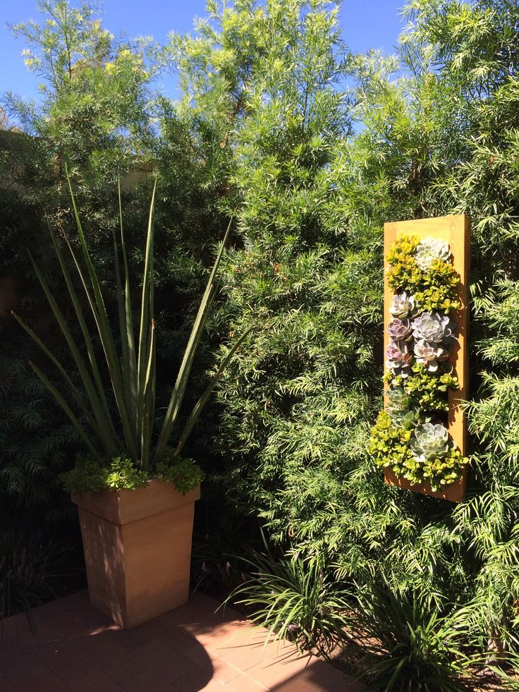 Verticle planter idea. Perfect for small gardens.