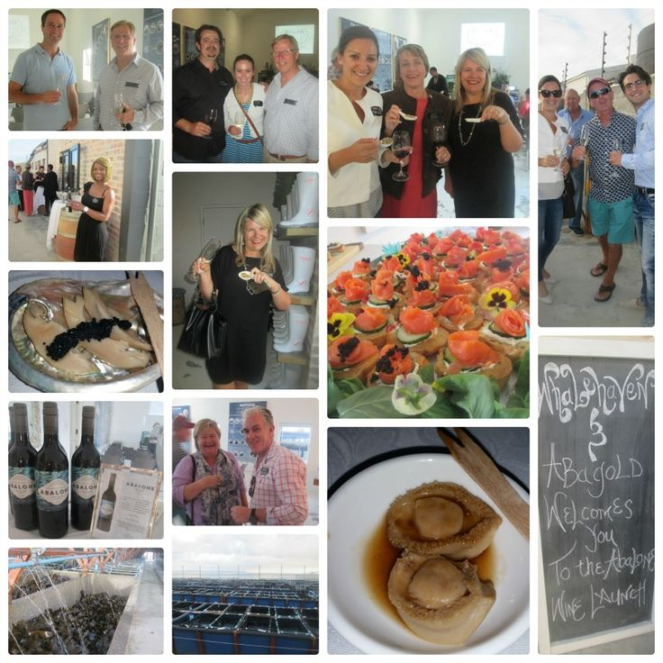 The recent launch of #Heartofabalone & #Whalehavenwine #Hermanus. So interesting to find our more about the new tours being offered.  Great to taste abalone - was soooo delicious.  Not what Ii thought at all.