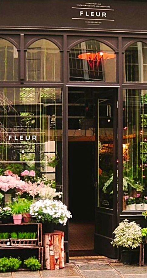 C'est un magasin qui vend des fleurs. Tu peux trouver une variété de couleurs et de fleurs.