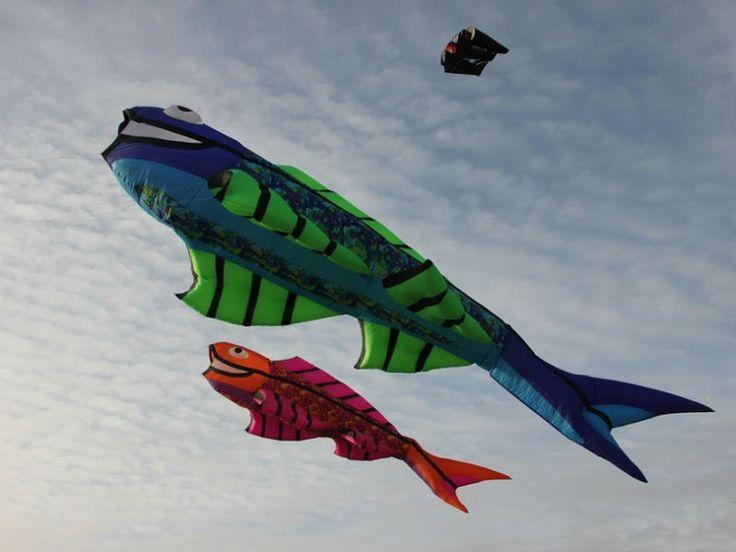 vent de folie tourinsoft2013 - ©Cerfs volants folie