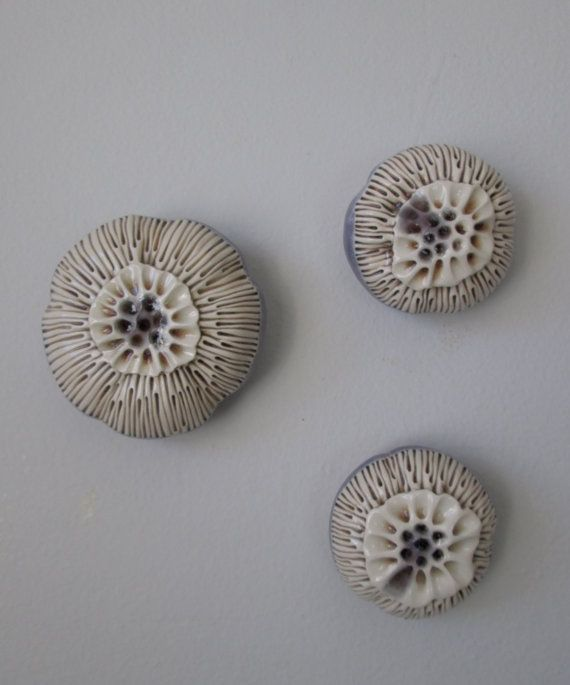 Satz von drei immergrün lila creme weiß und braun Seeanemone