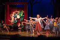Sprookjesboom de Musical, een wonderlijk muziekfeest - Efteling