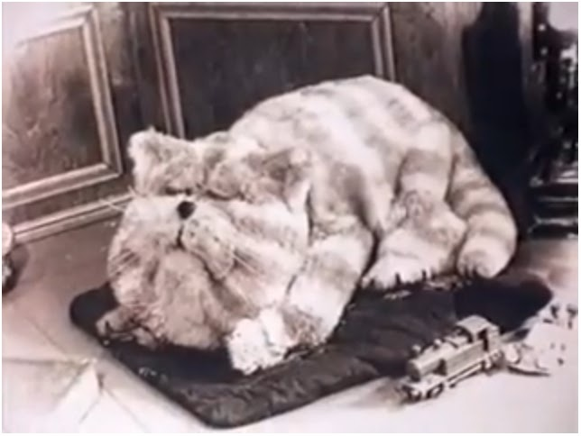 Bagpuss, dear Bagpuss, Old fat furry cat-puss. Another Oliver Postgate creation, also narrated. No sign of the Mouse Organ here
