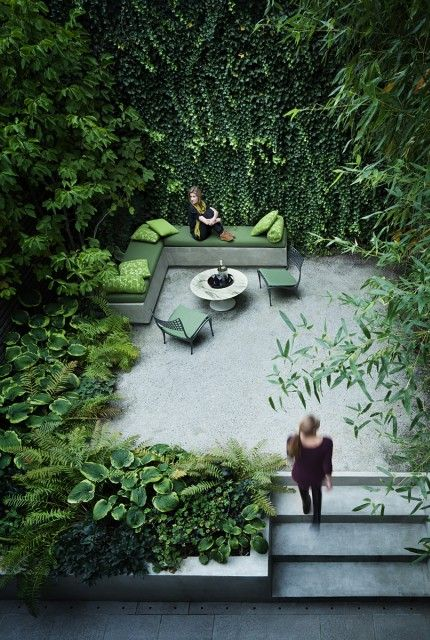 Green walled courtyard, so tranquil! Would be amazing in warm climate.