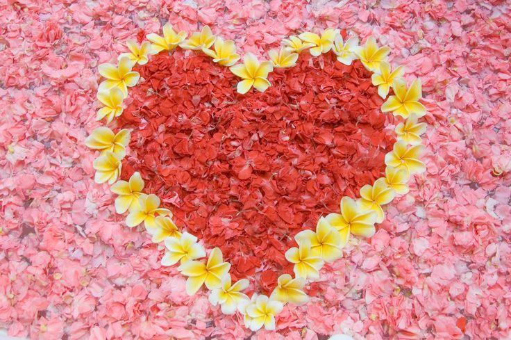 http://whatcomflowers.net/wp-content/uploads/2014/12/Pictures-of-Love-Flowers.jpg adresinden görsel.