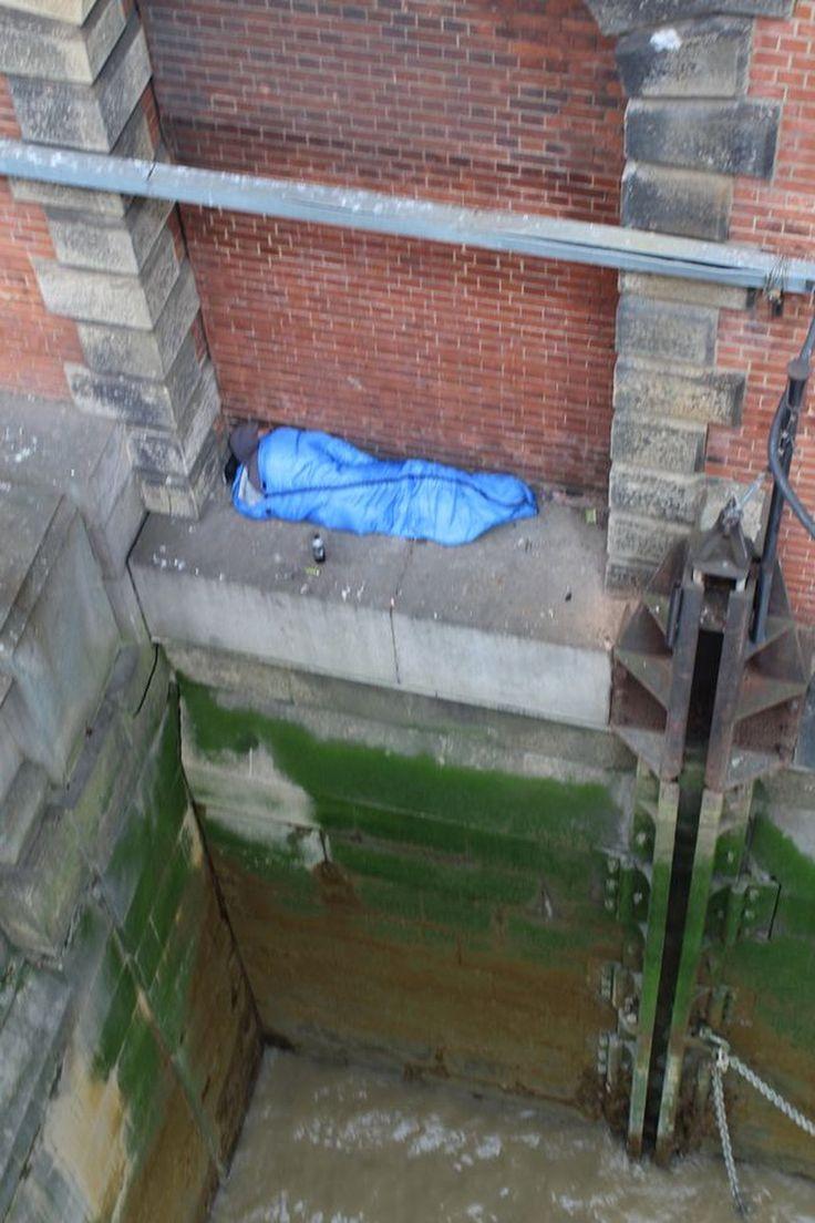 bezdomnyj-britanets-proslavilsya-svoim-besstrashiem-quibbll.com-3