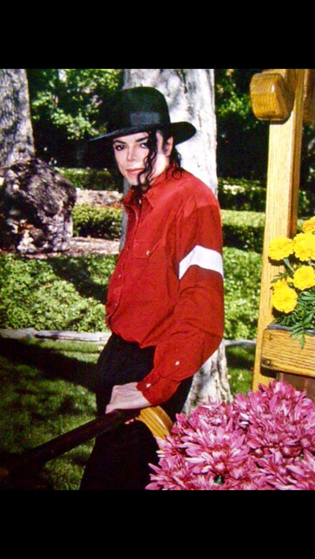 254 best images about MICHAEL JACKSON'S NEVERLAND RANCH on ...