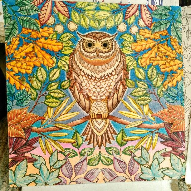 Secret Garden Coloring Book Art 145 Best Johanna Basford Images On Pinterest