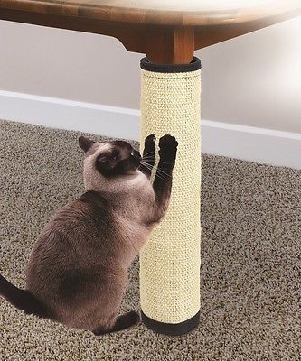Furniture Protection Cats