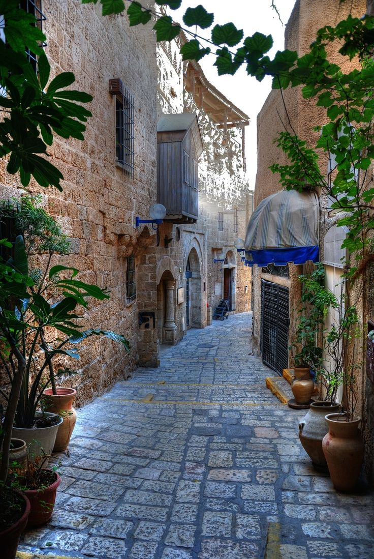 Alleyway in Jaffa by Dhani Barreñor