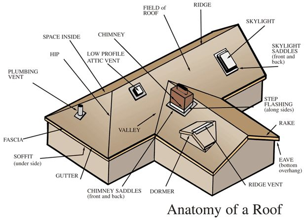 Here You Will See The Anatomy Of A Roof. The Different Types Of Component  Generally