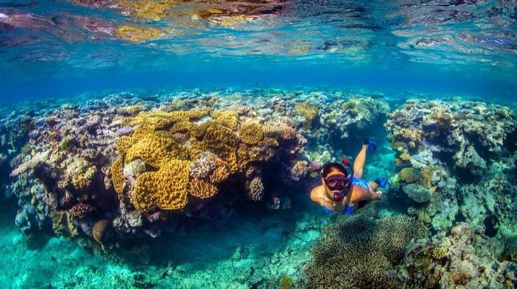 Great Barrier Reef, Australia 30 Stunning Beaches & Lakes With The Most Crystal Clear Waters In The World • Page 4 of 6 • BoredBug