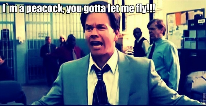 """Mark Wahlberg In """"The Other Guys"""""""