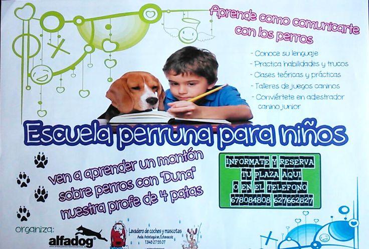 Talleres caninos