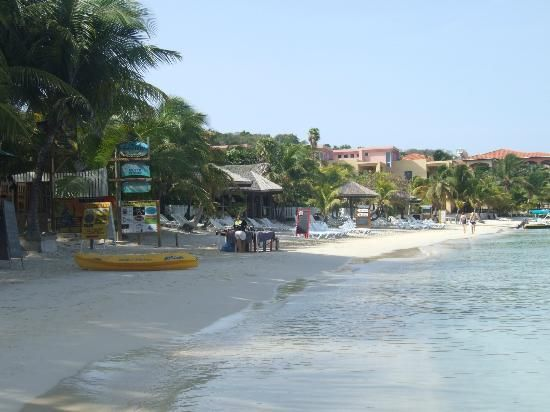 17 best harvest caye belize cruise private island images for Roatan dive resort