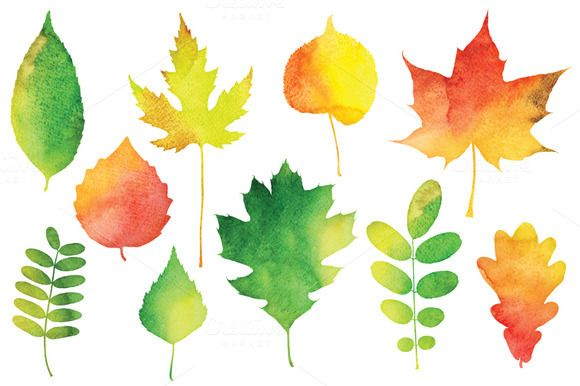 Check out Vector Watercolor Leaves by Paper Cards on Creative Market