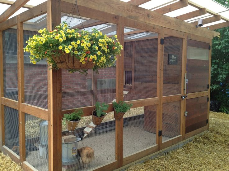 461 best images about chicken and duck coops on pinterest for Chicken and duck coop