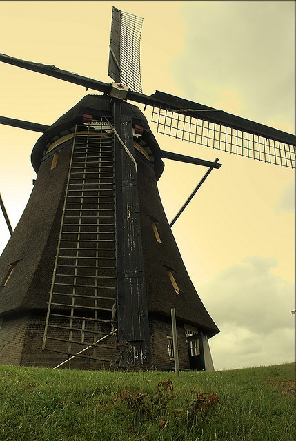 Kinderdijk/Nieuw-Lekkerland, South Holland. Live in it, it makes its own power, and helps in processing the food!!