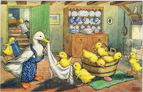 Ducklings Bath Time (Molly Brett) by dakota_boo, via Flickr