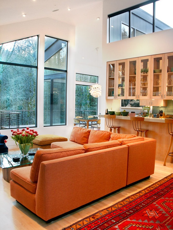 Orange Sofa Design, Pictures, Remodel, Decor and Ideas