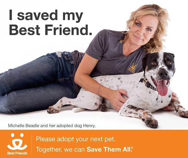 Best Friends Animal Society announced Michelle Beadle as its new spokesperson Monday on Facebook.