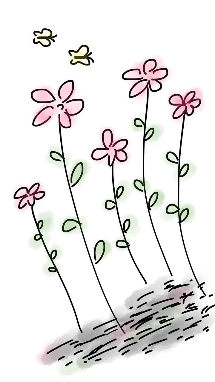 Gratis Obraz Na Pixabay Kwiat Rozowe Kwiaty Motyl Pink Flowers Butterfly Pictures Butterfly