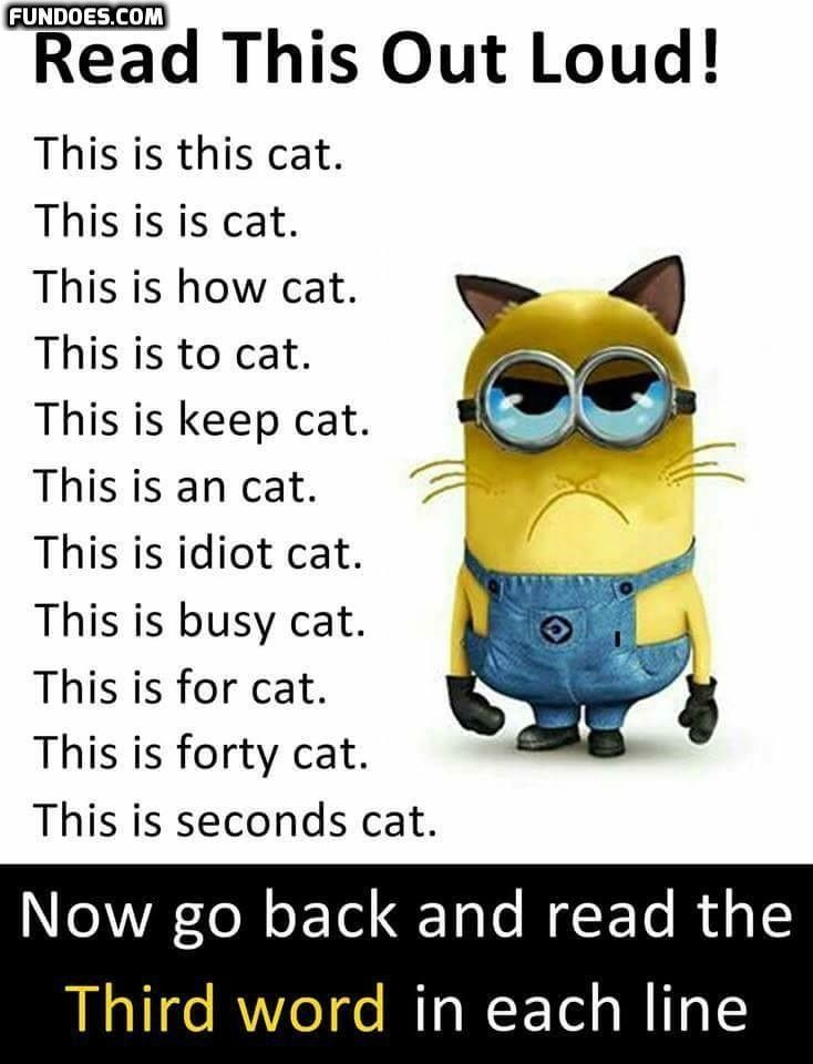 More Funny Memes In Www Fundoes Com To Make Laugh Clean Funny Jokes Minions Funny Cute Funny Quotes