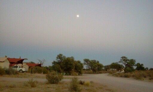 Kgalagadi Rest Camp