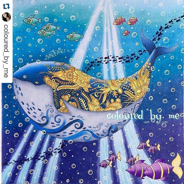 Perfect Photo Coloring Book 46 Post by desenhoscolorir on