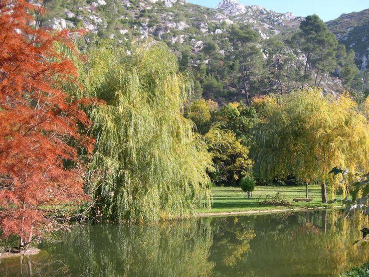 Moulin de Gemenos - jardin