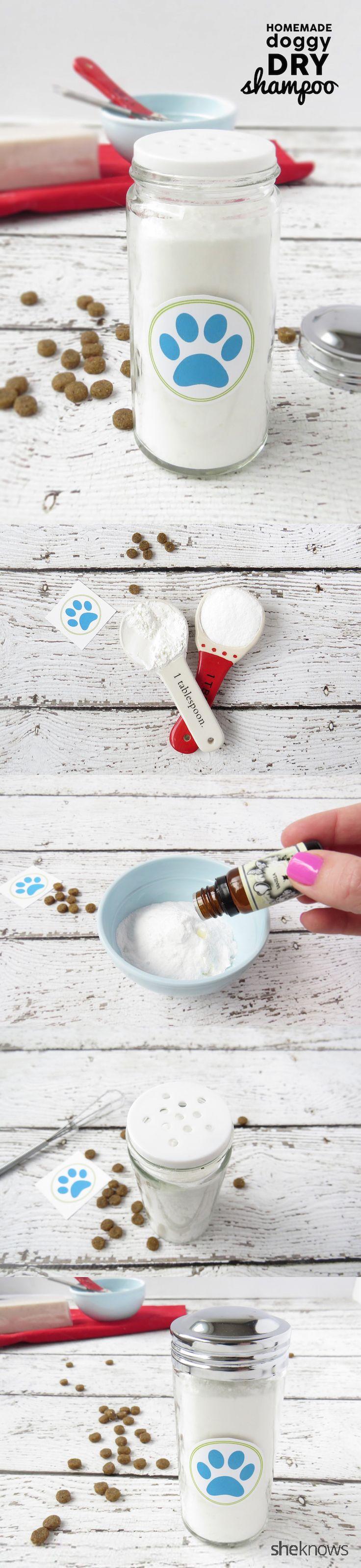 ¿Cómo hacer un champú seco para perros con sólo 3 ingredientes simples.  Grande utilizar en el medio baños perro!