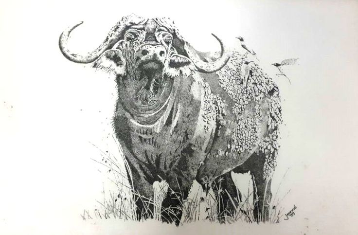 Buffalo.... One of Africas Big Five Medium: Black Rotring Ink Pen Technique: Stippling Size: A3 Available!