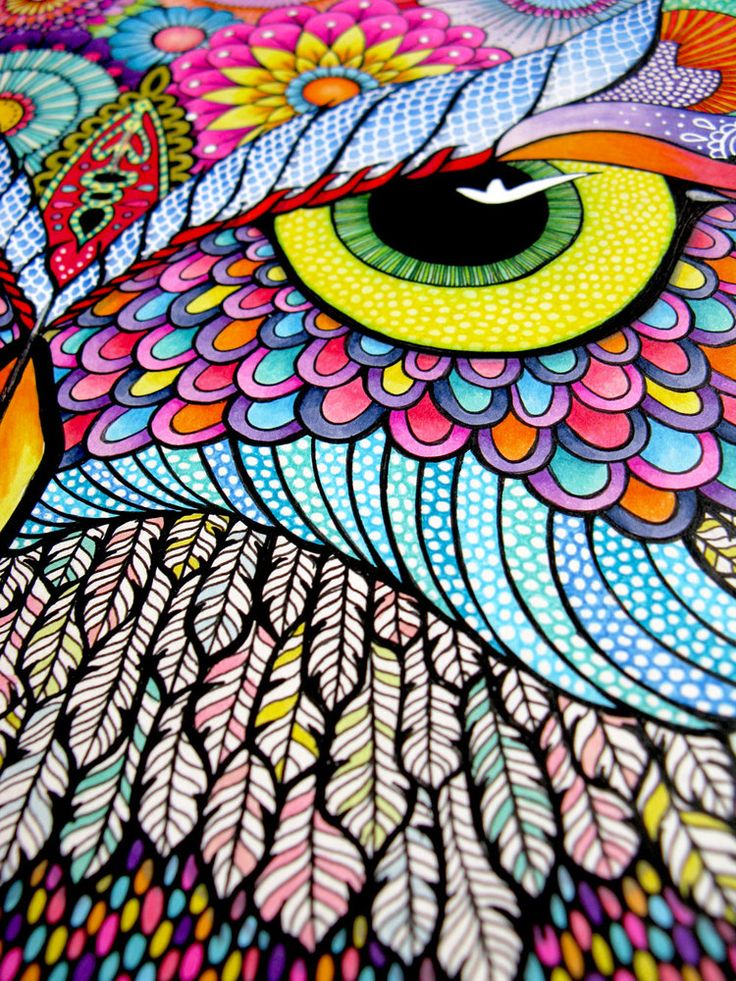 543 Best Images About Zentangle Color On Pinterest Watercolor Paper Watercolors And