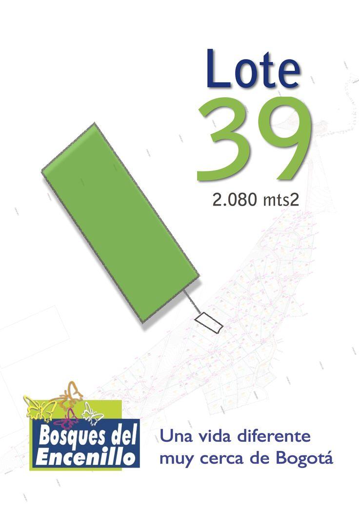 Lote 39  http://www.bosquesdelencenillo.com #ventaloteslacalera